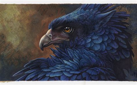 griffin feathers drawing inks wallpaper 1680x1050