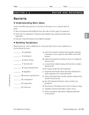 Section 1 Reinforcement Cell Division And Mitosis Worksheet Answers by Viruses And Bacteria Review And Reinforce Answers Fill