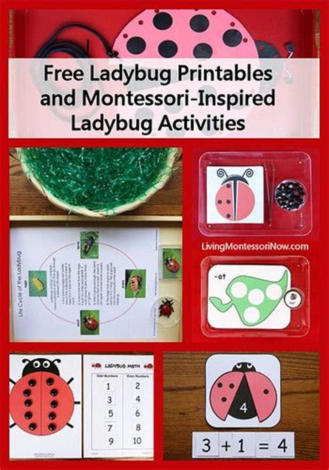 montessori printables preschool montessori monday free ladybug printables and montessori