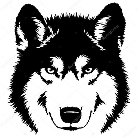 imagenes en blanco y negro de lobos pintura preto e branca desenhar ilustra 231 227 o lobo