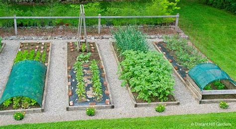 Raised Bed Vegetable Garden Vegetablegardeninglife Com How To Grow A Raised Bed Vegetable Garden