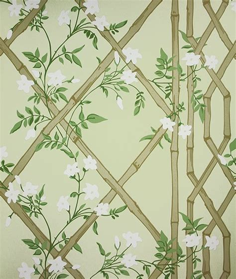 wallpaper green trellis 17 best ideas about bamboo wallpaper on pinterest