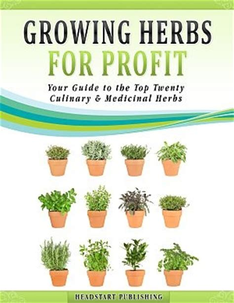 Gardening For Profit Ten Most Profitable Herbs To Grow Headstart Publishing
