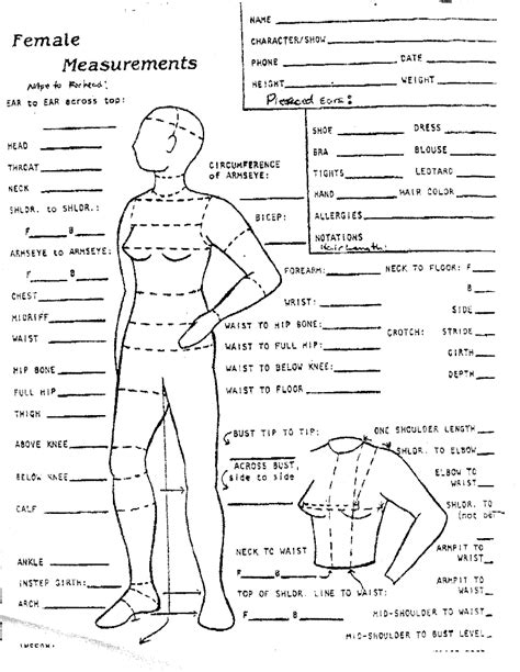 measurements template 1000 images about sewing measure and croquis on