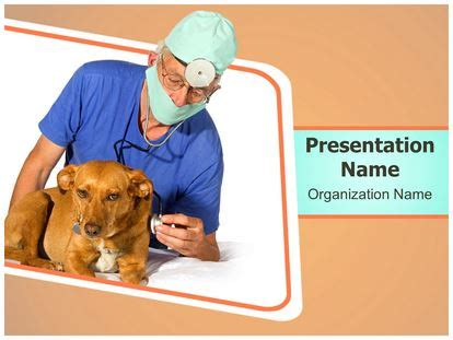 powerpoint templates for veterinarians veterinarian powerpoint template background