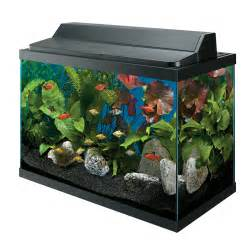 Gallon Aquarium