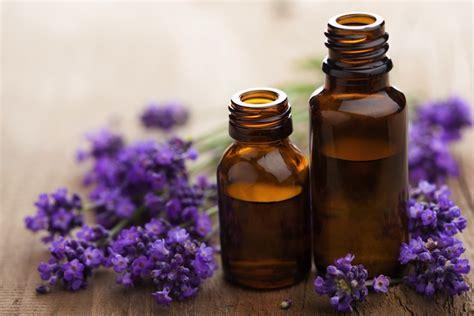 Minyak Lavender obat alami kurangi migrain jdlines