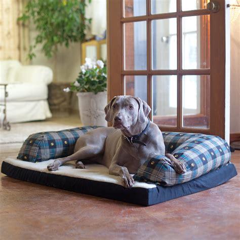 pet beds at walmart walmart orthopedic dog bed dog beds gallery images and dog beds dog beds and costumes