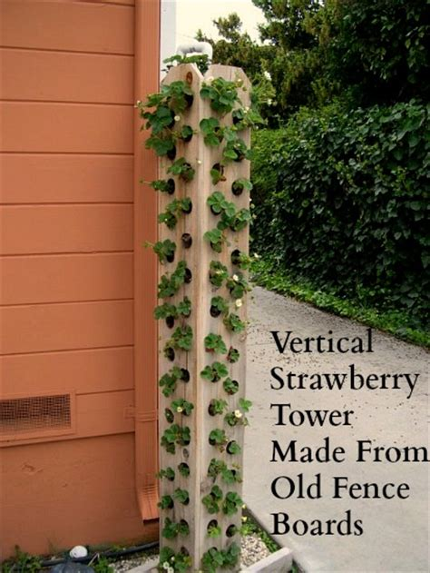 6 diy ways to grow a vertical strawberry garden porch advice