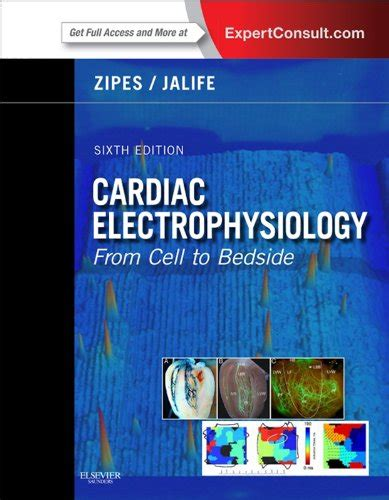 Weekend Mba For Dummies Pdf by Read Cardiac Electrophysiology From Cell To