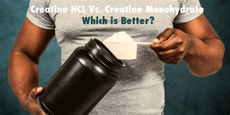 creatine vs creatine monohydrate creatine hcl vs creatine monohydrate which is better