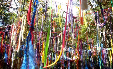 how to string ribbon on a tree the vineyard gazette martha s vineyard news island artists win prestigious awards