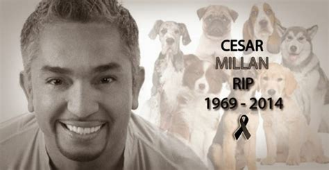 famous people died yesterday hoax busted report on popular dog whisperer cesar
