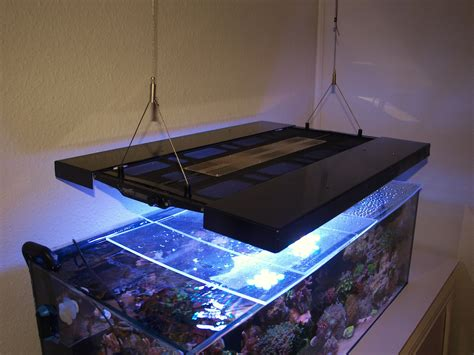 diy t5 aquarium lighting diy maxspect razor hybrid reef2reef saltwater and reef
