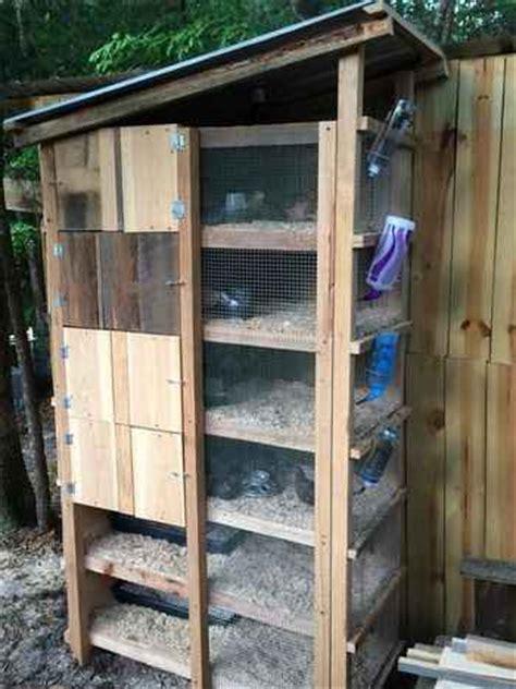 diy quail hutch ideas  designs
