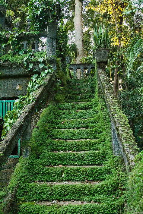 Human Garden by Green Stairs Picture By Friiskiwi For Nature Vs Human