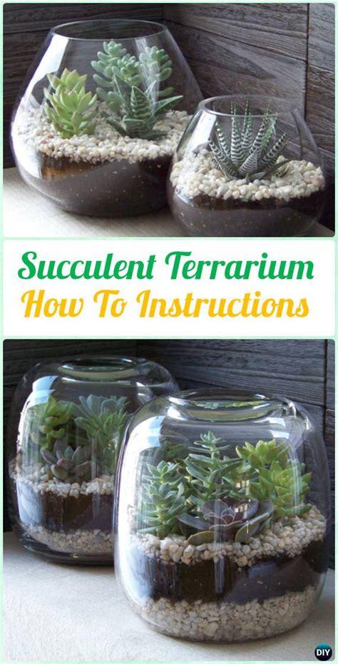 diy indoor outdoor succulent garden ideas veryhom