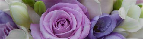 fiori colore viola fiori matrimonio viola