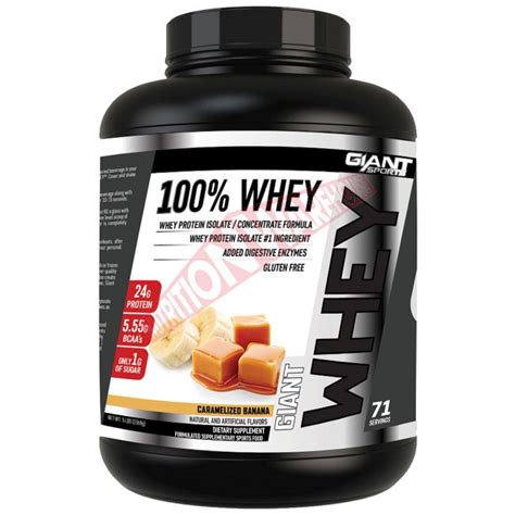 Six Pack 100 Whey Protein 100 whey by sports big brands warehouse prices