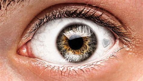 The Eyes Have It Eyeball Pics