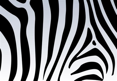 printable vector images zebra print vector background download free vector art