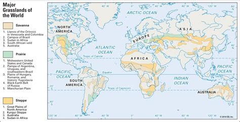 biome map with country names facts top 16 grassland facts animals plants climate