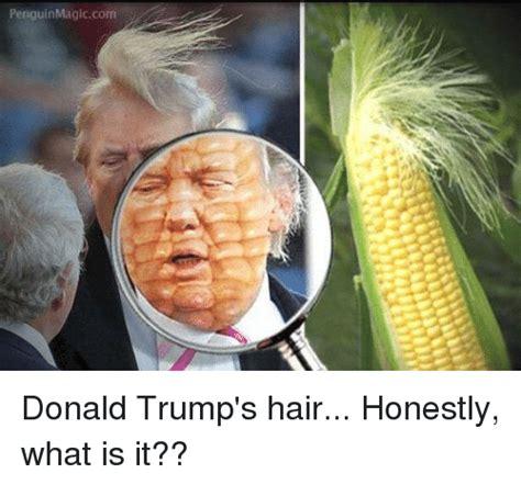 donald trump vs corn 25 best memes about trumps hair trumps hair memes