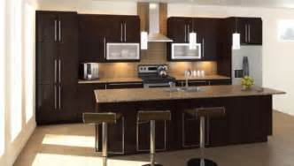 Home Depot Kitchen Design Gallery Home Depot Kitchen Design Best Exle My Kitchen Interior Mykitcheninterior