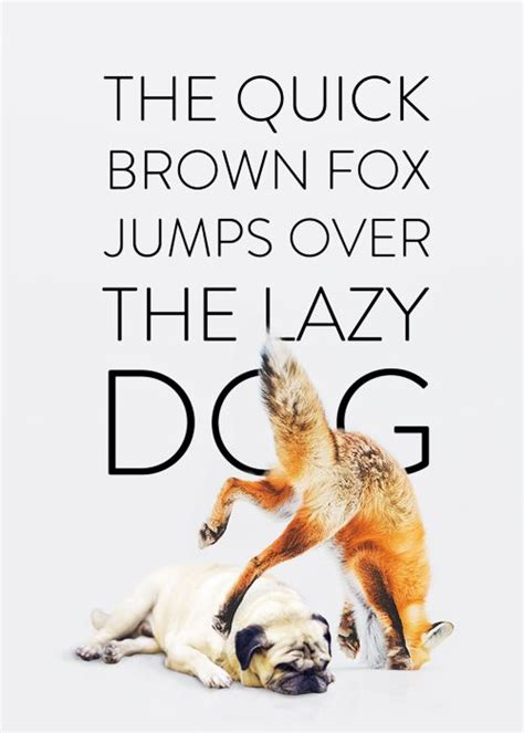 the brown fox jumped the lazy 1000 images about the brown fox jumps on typography