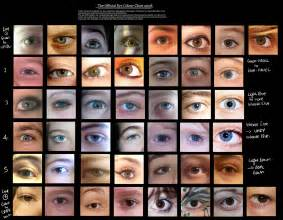 eye color only 7 eye colour chart by delpigeon on deviantart