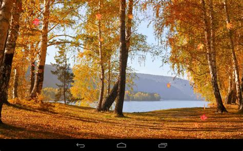 google autumn wallpaper herbst wallpaper android apps auf google play