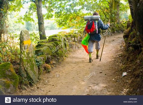 a pilgrim s guide to the camino de santiago camino francã s â st jean â roncesvalles â santiago camino guides books pilgrims walking at the pilgrimage way of camino de