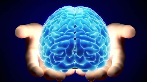 Brains Not by Official Website The Future Of Brain Transplants