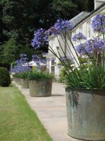 Large Pots For Outdoor Plants 25 Best Ideas About Large Planters On Large