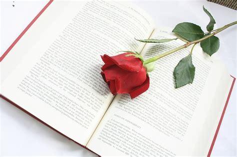 libro red rosa a graphic foto gratis rose fiore libro red parole immagine gratis su pixabay 615259