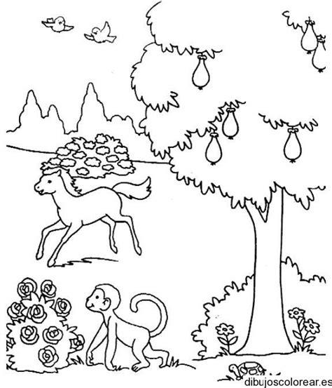 imagenes para colorear bosque paisajes dibujos para colorear
