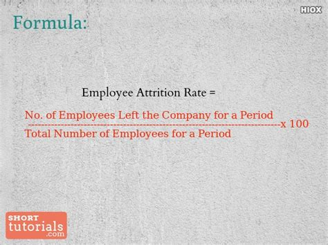 employee rate how to calculate employee attrition rate