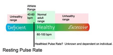 normal pulse normal pulse rate chart by age images frompo
