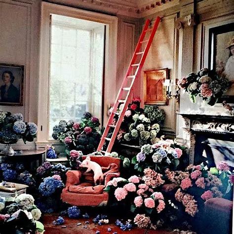 room of roses kany west adere a tend 234 ncia entre 233 is e surpreende mulher no brasil quarto cheio de