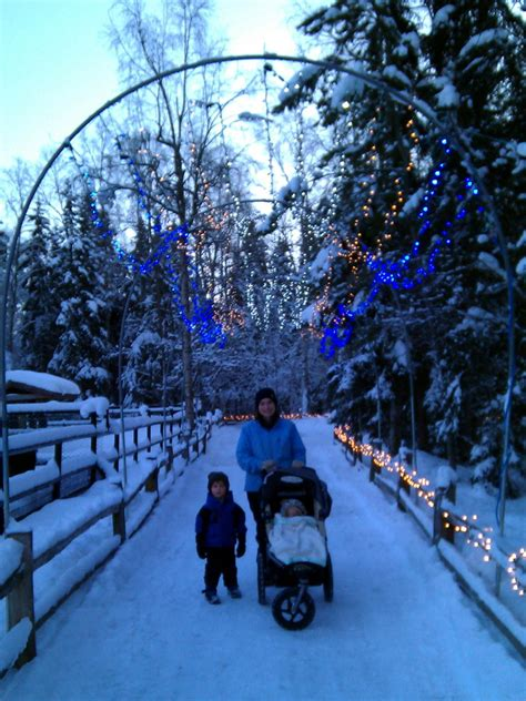 anchorage zoo lights zoo lights 15 welcome to alaska