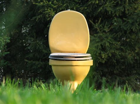 urinstein entfernen im rohr 5769 einfacher und gesunder lifestyle fuchsmunter