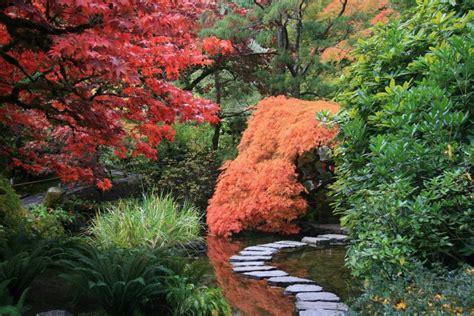 imagenes de jardines estilo japones c 243 mo crear un jard 237 n japon 233 s en casa