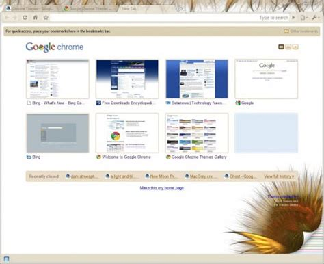 chrome themes white chrome themes