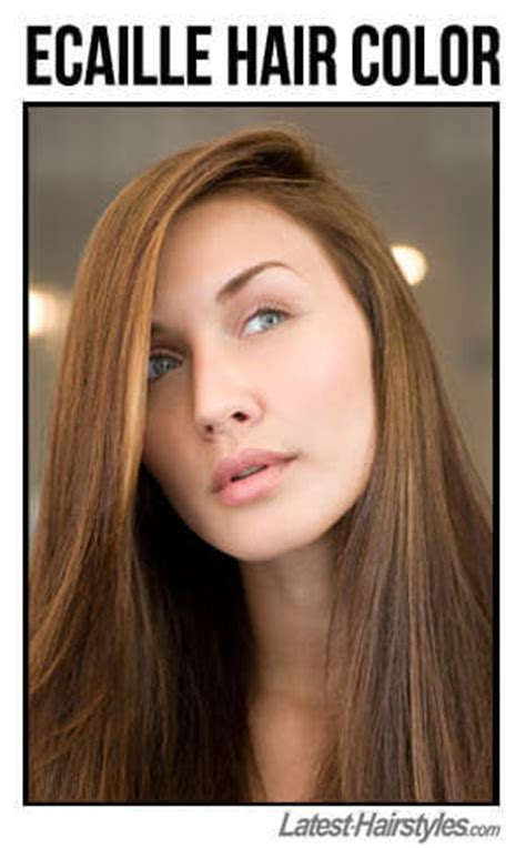 ecaille hair color time to write ecaille hair color 101 all about this new