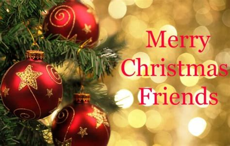 merry christmas message   christmas sms text messages