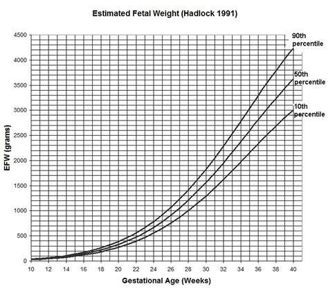 weight estimator fetal weight percentile calculator dandk