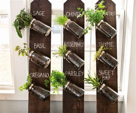 vertical indoor herb garden rebecca s bird gardens blog diy mason jar vertical herb