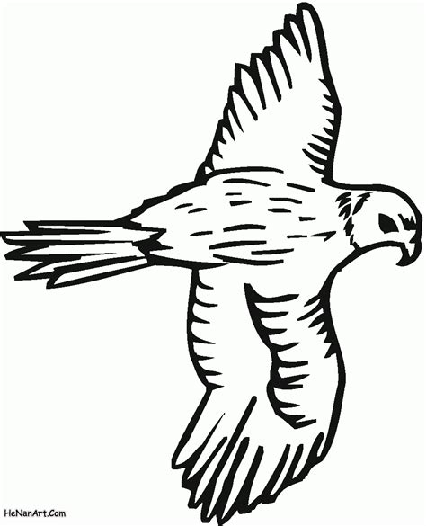 free peregrine falcons coloring pages