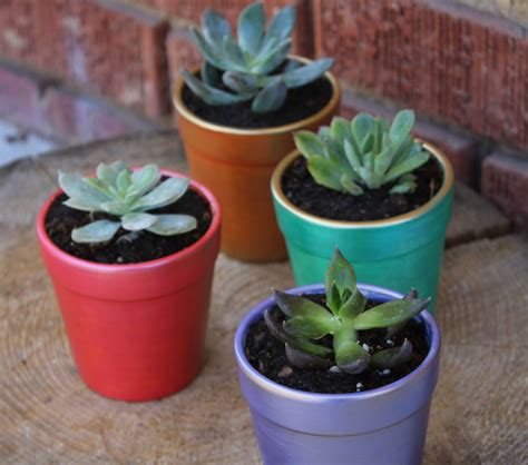 colorful flower pots painted diy colorful flower pots diyideacenter