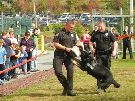 Lackawanna County Sheriff S Office by K 9 Unit Deputies With The Lackawanna County Sheriff S